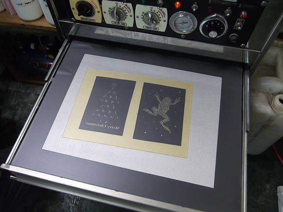 02生樹脂版とフィルムs.jpg